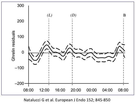 Hunger beim Intervallfasten - Grafik