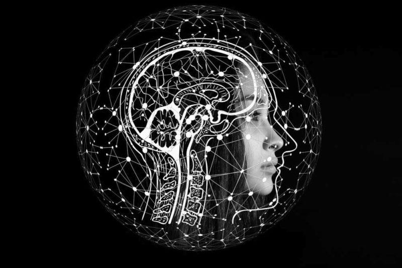 Biohacking durch Intervallfasten - Gehirn